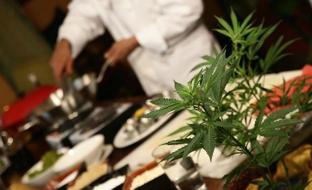 Normativa Cannabis - Ecuador